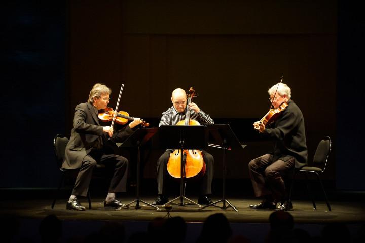 Zebra Trio Philippe Stirnweiss